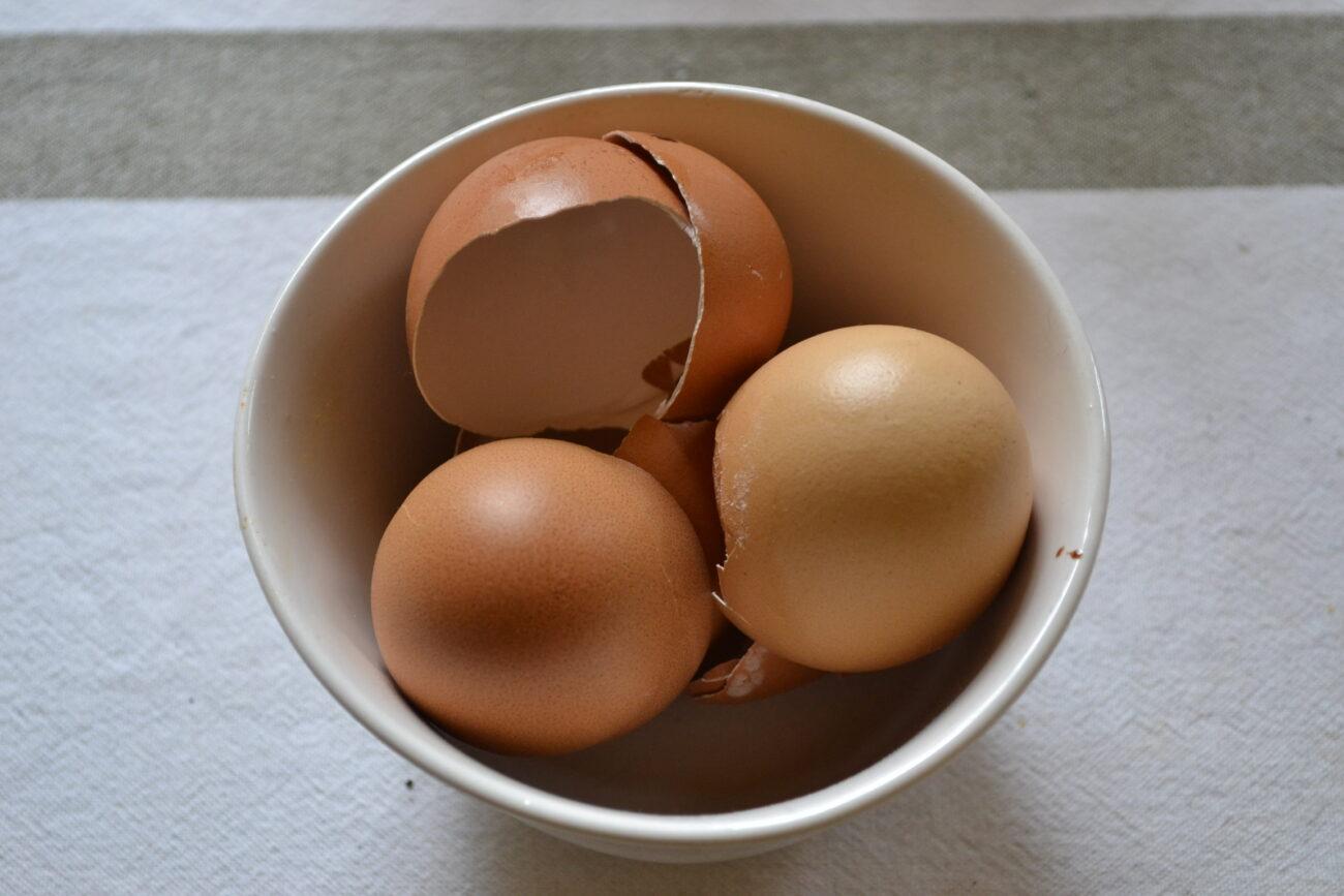 Eierschalen Im Garten Mohoga Werkstatt